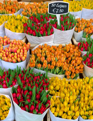 Bloemenmarkt w Amsterdamie