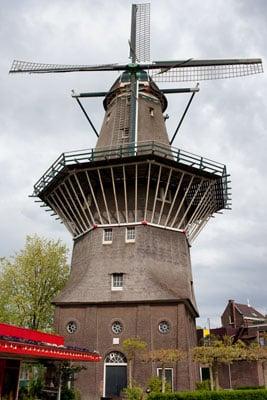 Wiatrak w Amsterdamie